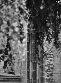 window I von joespics