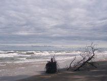 tosendes Meer von alana