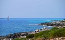Coastal scene by Andrew Heaps