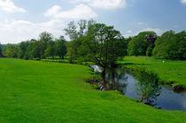 Riverside Meadows, Ashford-in-the-Water von Rod Johnson