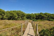 Naturpark Albufera des Grau Menorca von Mark Gassner