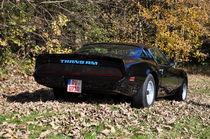 1979 Pontiac Firebird Trans Am WS6 by Mark Gassner