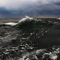 seascape von k-h.foerster _______                            port fO= lio