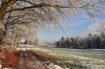 Winteranfang, Ruhe kehrt ein. von Mark Gassner