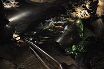 Lamprechtshöhle, Österreich by Mark Gassner