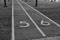 Laufen, Hüpfen oder Krabbeln ? von leddermann