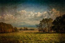 'Autumn nature' by Milan Cernak