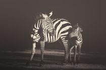 African souls: XVI by Manuela Kulpa
