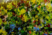 Autumn Ripples Abstract by Jim DeLillo