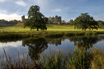 Alnwick Castle von David Pringle