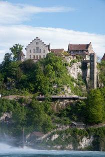 Rheinfall Schaffhausen by Lars Niebling