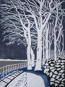 Winterelbe by Dieter Tautz