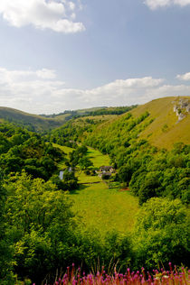 Upperdale from Monsal Head von Rod Johnson