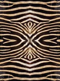 Kaleidoscope Zebra 10 von Steve Ball