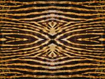 Kaleidoscope Fur 15 von Steve Ball