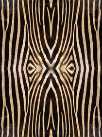 Kaleidoscope Zebra 16 von Steve Ball
