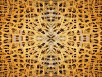 Kaleidoscope Fur 19 by Steve Ball