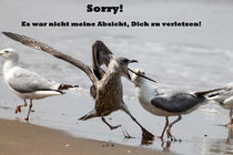 Sorry! von melanie-mp