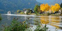 Herbst an der Mosel by gscheffbuch