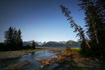 Tonsina creek by Chris R. Hasenbichler