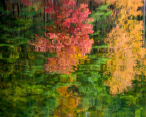 Abstract Autumn by Jim DeLillo