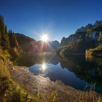 Morning glory by photoplace