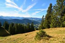 Allgäu - Blick vom Seelenkopf in Richtung Bregenzerwald von Mark Gassner