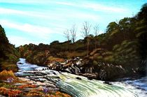 Wasserfall von Peter Schmidt