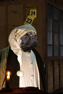 Ebenezer Dog - A Christmas Carol  by ir-md