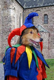 Dog Eulenspiegel  by ir-md