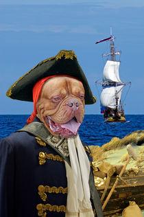 Long Dog Silver - Die Schatzinsel  by ir-md