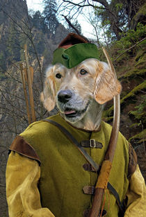Robin Dog - Der Rächer vom Sherwood Forest by ir-md