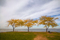 Fall Colors on Lake Erie von John Bailey