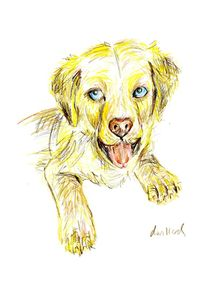 Golden Retriever Puppy von Deborah Willard