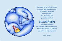 Blaubären by Nicola Turnbull