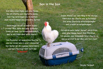 Sex in the box von Nicola Turnbull