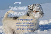'Winter' von Nicola Turnbull