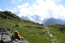 ein Blick auf die Alpen von Olga Sander