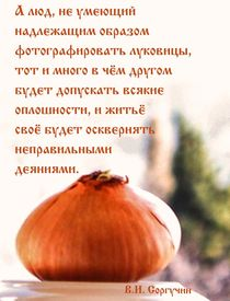 About taking puctures of onions by Raymond Zoller