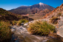 Teide Springtime von Raico Rosenberg