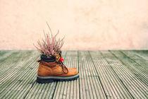 shoe flowers by Jürgen Müngersdorf