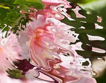 pink acquerello by bruno paolo benedetti