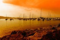 orange harbour santa margherita von Joseph Borsi