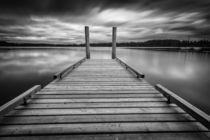 Comox lake Vancouver island von Leighton Collins