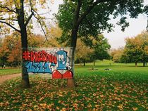 Graffiti street urban art in the park in autumn leaves by Kirsty Lee