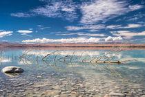 Lake Pukaki #1 von Sebastian Warneke