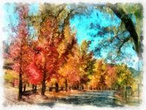 Der bunte Herbstweg (The colorful autumn walk) von Wolfgang Pfensig