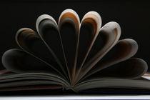 Das Buch by starcy