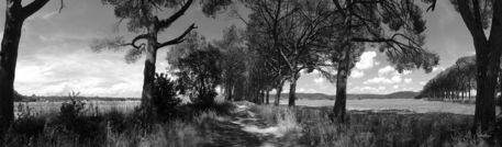 Maremma-panorama0-205x60
