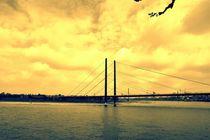 Brücke über den Rhein von leddermann